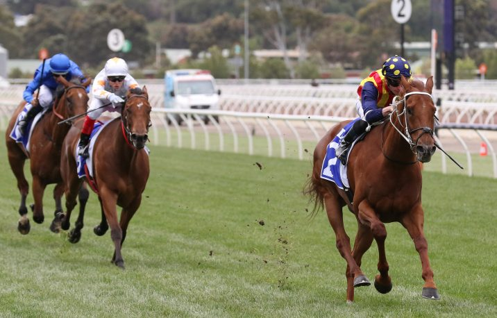 2019 Darley Sprint Classic Winner Nature Strip Flies Home