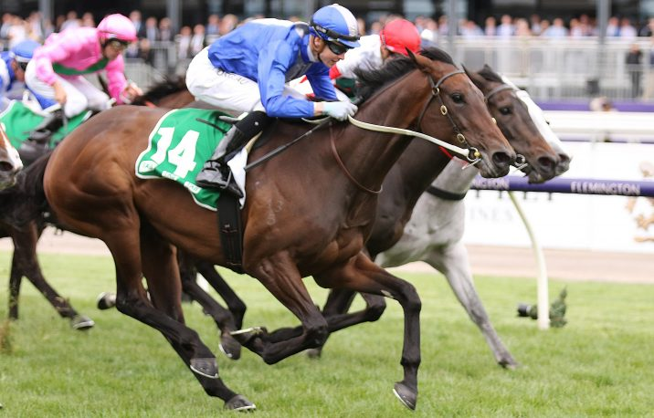 Matriarch Stakes 2019 Results: Oceanex Beats Fellow Roughies