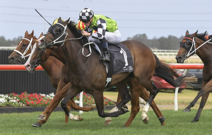The Gong 2019 Results: Mister Sea Wolf Wins for Waller