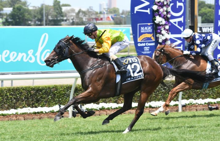 2019 George Moore Stakes Field & Odds Update