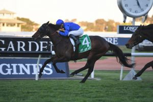 Festival Stakes 2019 Betting Update: Ranier Easing Favourite