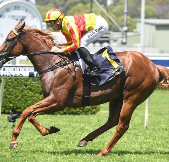 Quackerjack Leads Early 2019 Villiers Stakes Betting