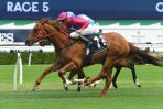 2020 Magic Millions 3YO Guineas Calls for Randwick Winner Superium