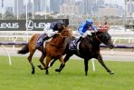 Conceited Backed to Win 2020 Magic Millions 2YO Classic for Godolphin