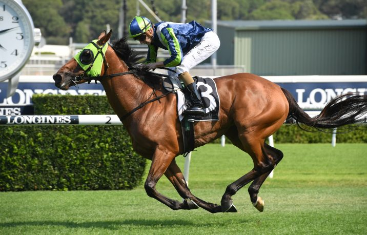 Luvaluva Breaks Drought in Summer Cup 2019