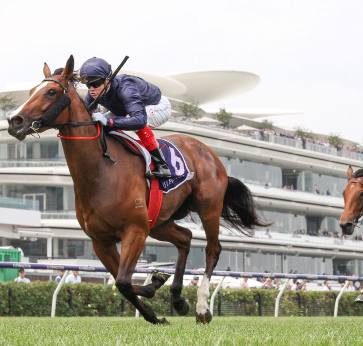 Personal Invite into 2020 Blue Diamond Stakes