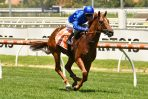 Godolphin Colt Hanseatic Flies Home in Blue Diamond Preview 2020