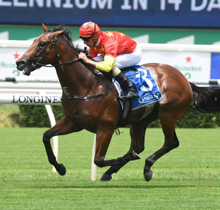 Rulership Firms in 2020 Blue Diamond Stakes Betting