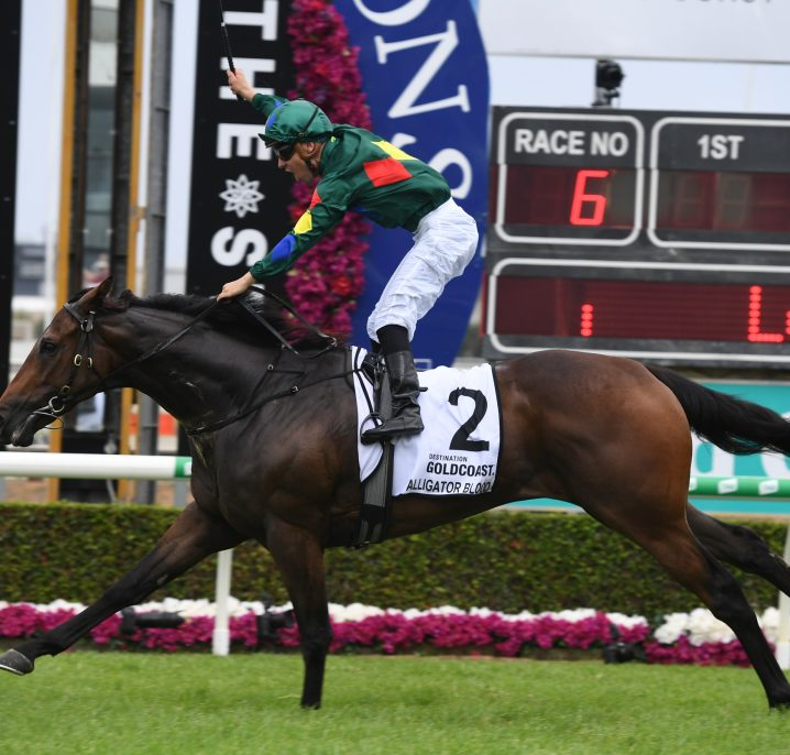 Kiwi Catalyst Wins First-Up Ahead of Australian Guineas 2020