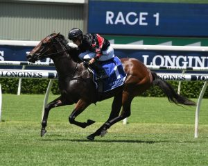 Golden Slipper Odds Firm on Widden Stakes Winner Away Game