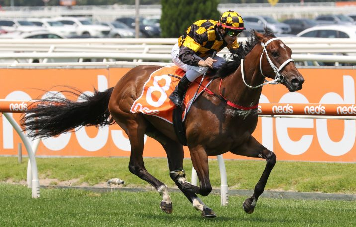 Blue Diamond Odds Firm on Prelude Winning Filly Letzbeglam