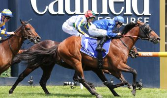 Microphone On in Hobartville Stakes 2020 Betting