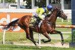2020 Oakleigh Plate Target for Rubiton Stakes Winning Filly Anaheed