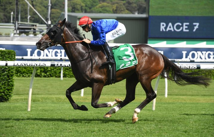 2020 Light Fingers Stakes Results: Surround Stakes Calls for Flit