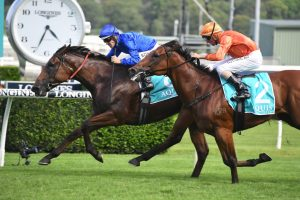 Apollo Stakes Win Sees Alizee Firm in Chipping Norton Stakes Betting