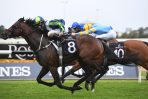 $41 Hobartville Stakes Winner Brandenburg Firms in Randwick Guineas Betting