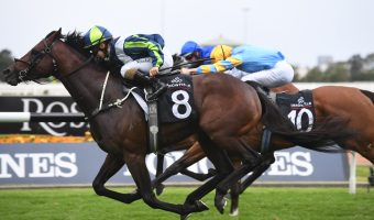2020 Doncaster Mile Field & Odds: Brandenburg New Favourite