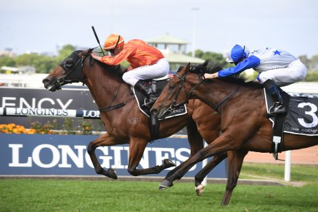 Dreamforce First George Ryder Stakes Winner Since Winx: Leads All The Way
