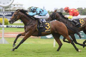 2020 Schweppervescence Resuts: Inglis Sires' Odds Firm on Upset Winner Holyfield