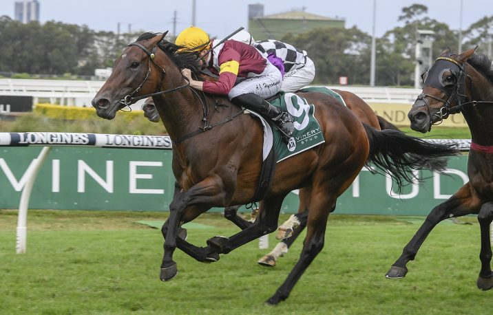 2020 Vinery Stud Stakes Results: Shout The Bar Wins in a Boilover
