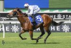Doncaster Day Race 1 Results: Doubtland Demolishes Kindergarten Stakes Field
