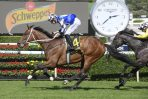 Sydney Cup Back-Up for Chairman's Winner Raheen House
