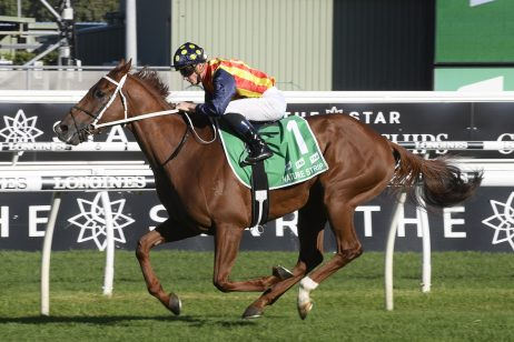 Nature Strip Heads 2020 Darley Sprint Classic Nominations & Betting