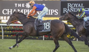 Doncaster Mile 2020 Results: $41 Mare Nettoyer Scores Upset