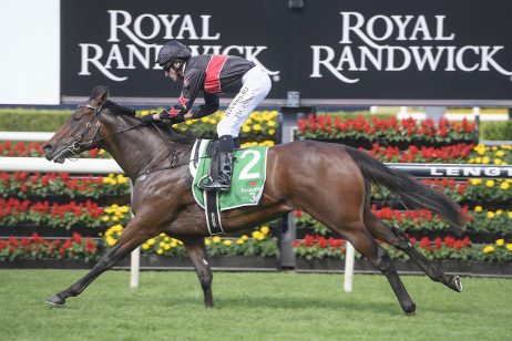 Away Game Heading Back to the Paddock Following Dominant Percy Sykes Stakes Win