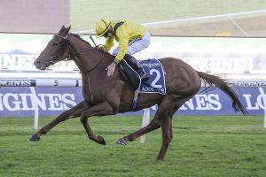 Queen Elizabeth Stakes 2020 Results: Addeybb Beats Verry Elleegant