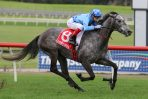2020 Queen Of The South Stakes Winner Shrouded In Mist In An Upset