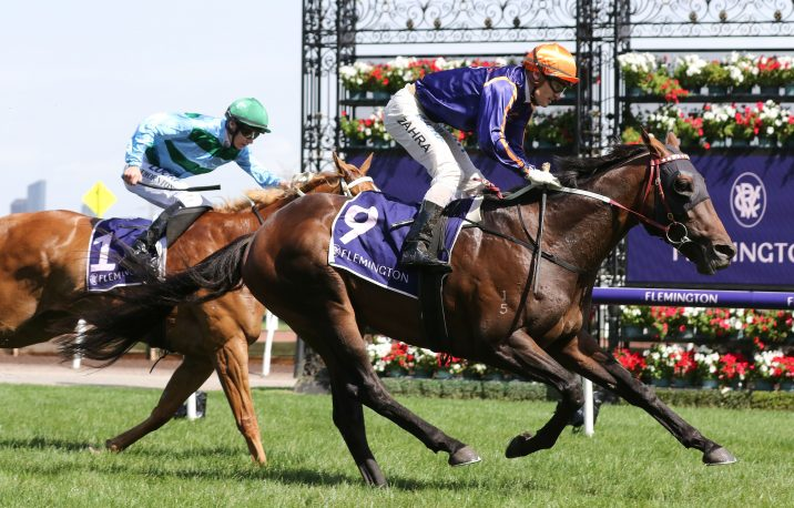 2020 Warrnambool Cup Field & Odds: Too Close To The Sun Hot Favourite