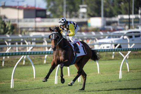 Ballistic Boy Overcomes Wide Gate to Win 2020 Rough Habit Plate