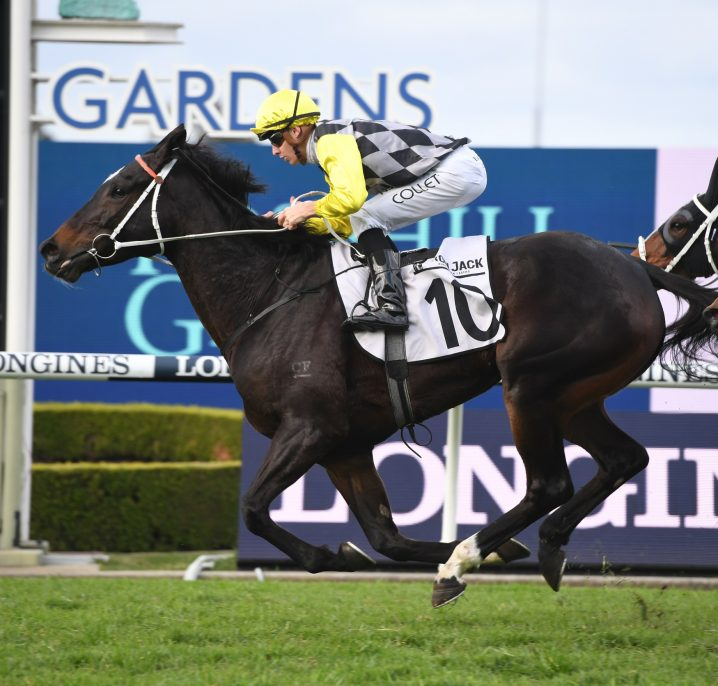 2020 Grafton Cup Nominations & Odds Are Frankely Awesome