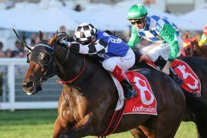 Plein Ciel (Photo: Ultimate Racing Photos) - Races.com.au