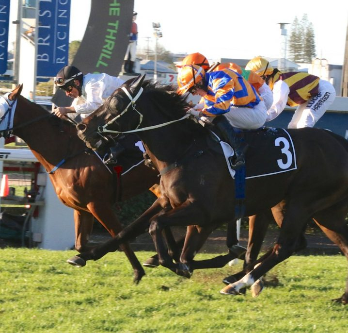 2020 Glasshouse Handicap Field & Betting: Soxagon Nears Odds-On