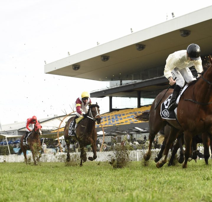 2020 Winter Stakes Results: Noble Boy Back to Winning Form