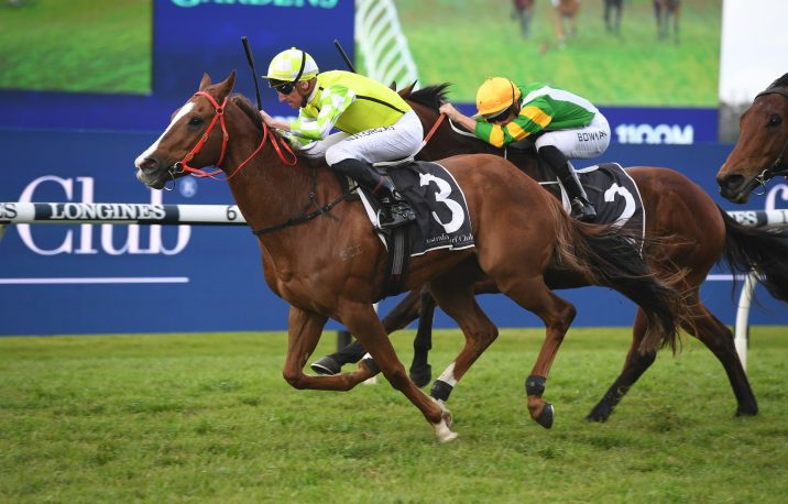 2020 Missile Stakes Odds Update: Eduardo Market Mover