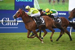 Pride Tips Missile Stakes Winner Eduardo For The Everest 2020 Slot