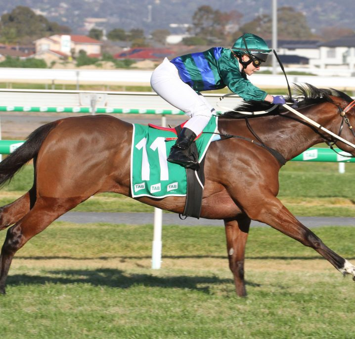 2020 Quezette Stakes Field & Odds: Parlophone Short Favourite