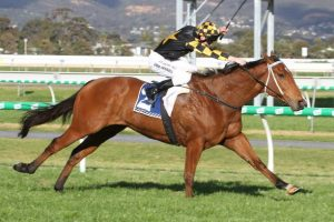 Sir Rupert Clarke Stakes 2020 Winner: Behemoth Too Good Again