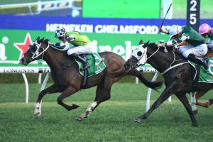 Chelmsford Winner Mister Sea Wolf Firms in George Main Stakes Betting
