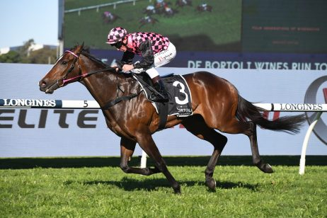 Golden Rose Into The Everest For Run To The Rose Winner Rothfire