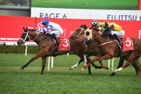 George Main Stakes Winner: Kolding Beats Home Three Stablemates
