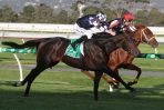 Cox Plate 2020 Final Field & Barriers: Russian Camelot Draws Outside Alley