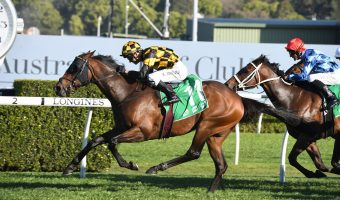 Cox Plate 2020 Betting Update: Russian Camelot Narrow Favourite