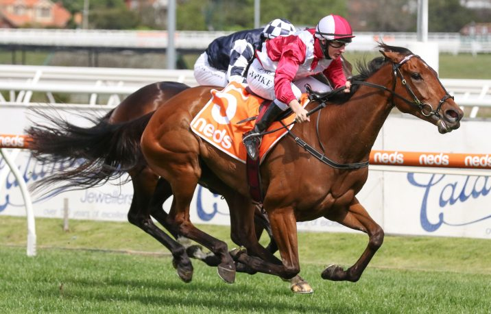 WA Guineas 2020 Field & Odds: Punters Shoot Blind in Wide Open Race