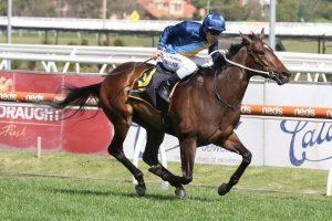 Odeum Horse Form (Photo: Ultimate Racing Photos) | Races.com.au