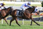 Mr Quickie Heads 2020 Kennedy Cantala Stakes Field & Odds