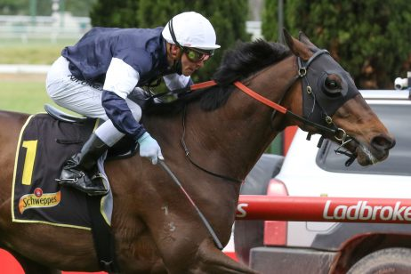 Crystal Mile Winner Homesman to Have Crack at Mackinnon Stakes 2020